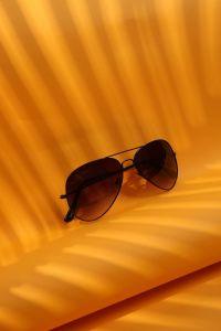 Polorize Gözlük